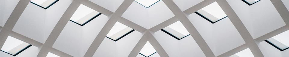 Grey and white ornate internal ceiling structure pattern