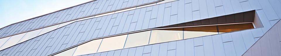 Sleek panel cladding